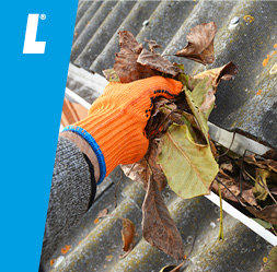 3 KEY DIY JOBS FOR AUTUMN